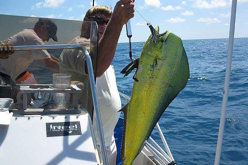 florida-keys-fishing-native-guidance